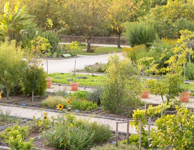 Jardin Botanique Yves Rocher La Gacilly Morbihan