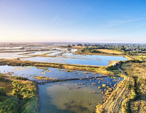 Réserve des marais de Séné Morbihan