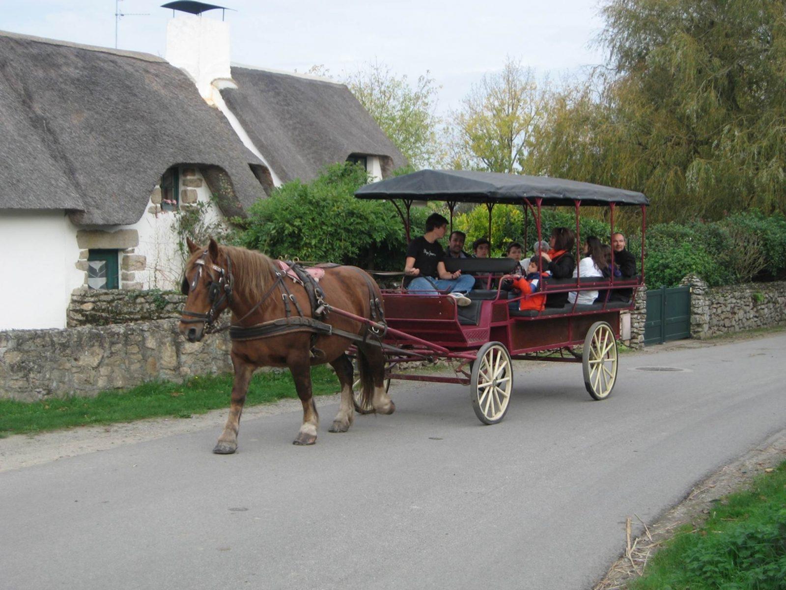 La Faune Briéronne