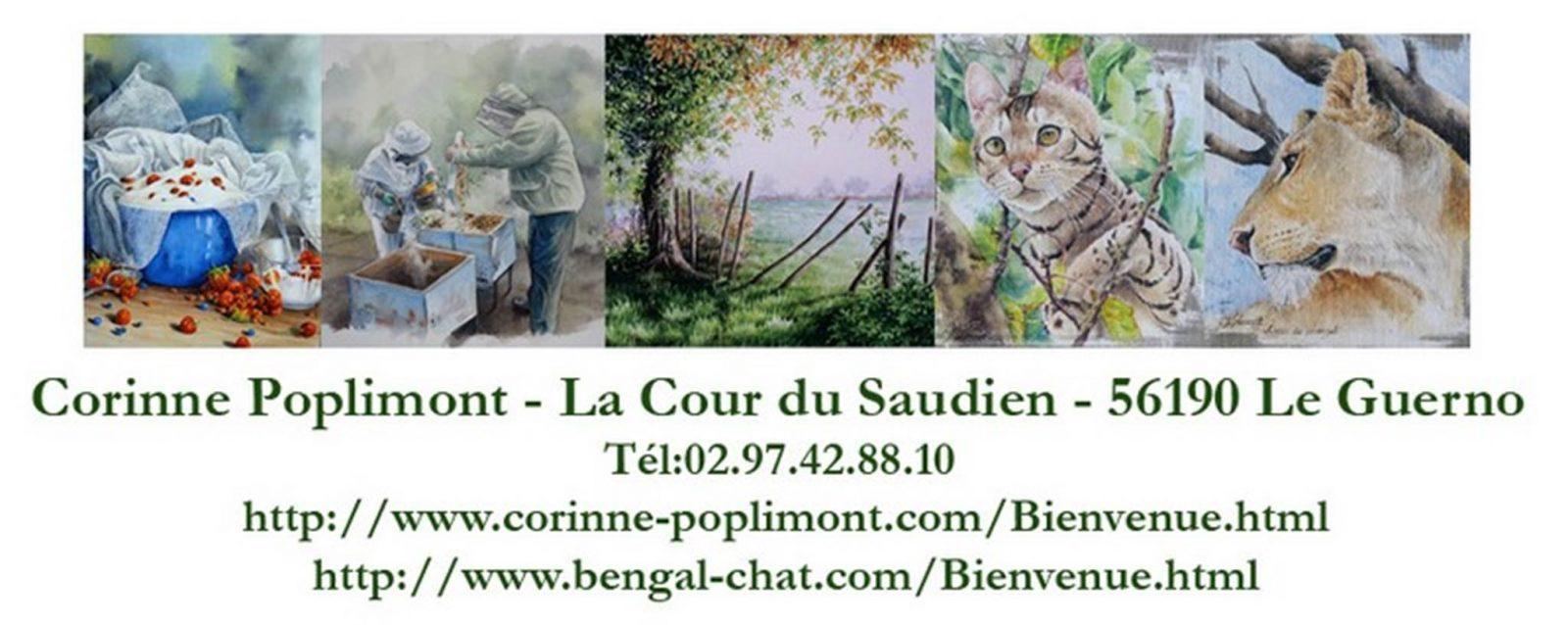 Corinne poplimont-Le Guerno-Tourisme arc sud bretagne
