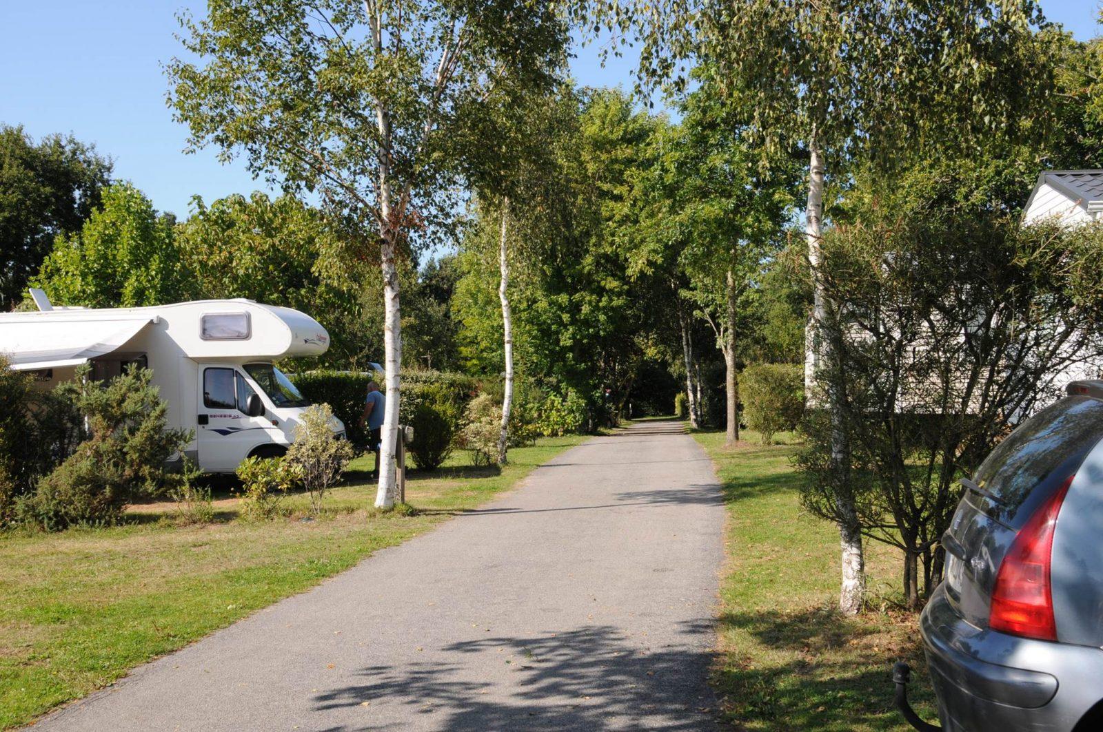 Vue générale sur les emplacements nus Camping LA BLANCHE HERMINE
