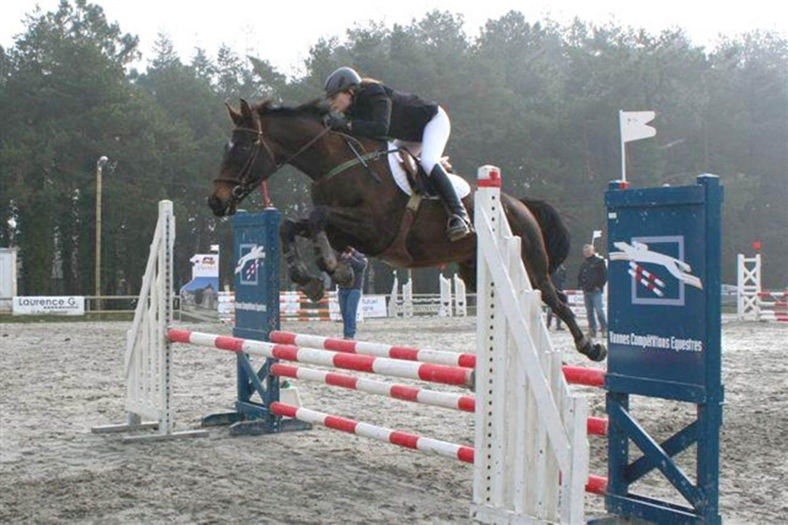 Ecole-Equitation-Petit-Bois-Surzur-Golfe-du-Morbihan-Bretagne sud