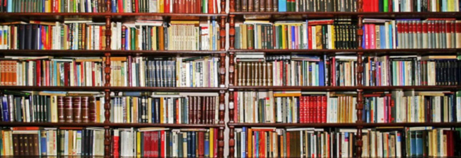 Bibliotheque-Arzal-Damgan la roche bernard tourisme