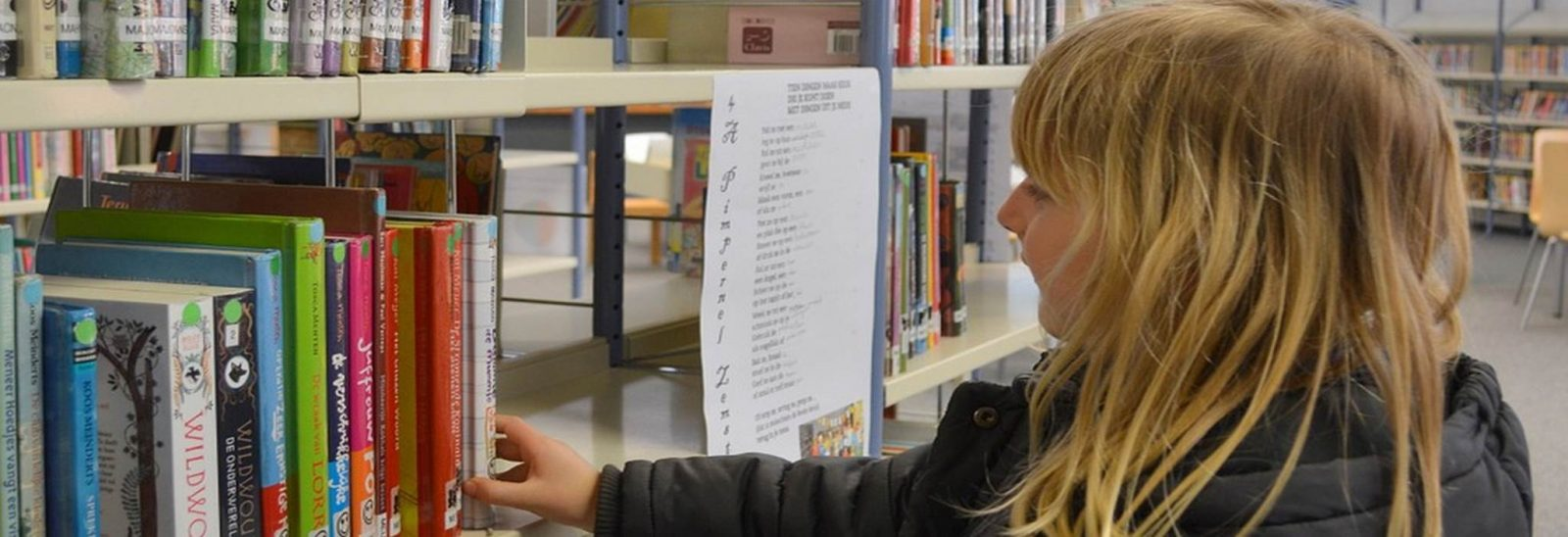 Bibliotheque-Noyal muzillac-Damgan la roche bernard tourisme